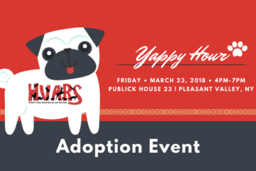 Find Puppy Love at Publick House 23