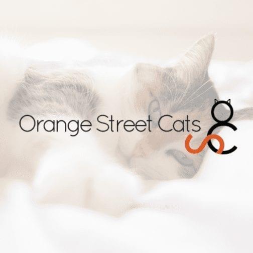 Orange Street Cats